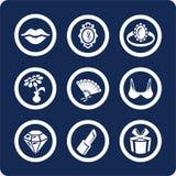 2 8 иконы красотки разделяют установленную женщину Стоковое Изображение