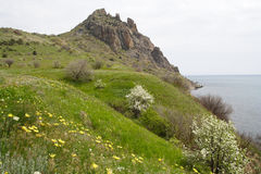 2岩石的峭壁 库存照片