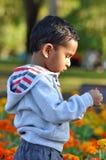 2 años del muchacho que recorre en parque Foto de archivo libre de regalías