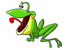 2 żaba Zdjęcie Royalty Free
