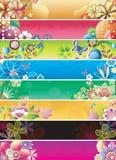 2 abstrakcjonistycznego sztandaru kwiecisty set Obraz Royalty Free