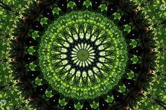 2 abstraktów zieleń Obraz Royalty Free