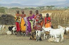 2 afrikanska folk Arkivfoton