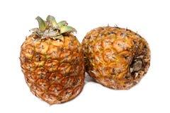 2 ananas insieme Fotografie Stock Libere da Diritti
