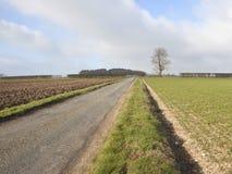 2 anglików krajobraz Zdjęcia Royalty Free