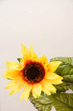 2 artificiais amarelos Imagens de Stock Royalty Free