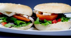 2 bagels Untoasted frais Images stock