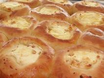 2 bakade tarts för ostmassa nytt Arkivbilder