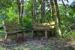 2 bancos de madera en un bosque Foto de archivo libre de regalías