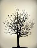 2 birds on tree. 2 birds on  sky silhouette couple lovers Stock Photo