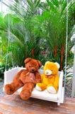 2 björndockor Royaltyfri Bild