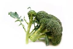 2 broccoli Royaltyfria Foton