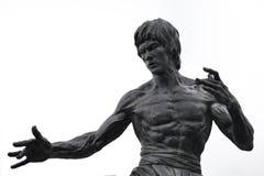2 Bruce lee statua Zdjęcie Stock