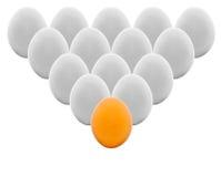 2 bruna vita äggägg Arkivfoto
