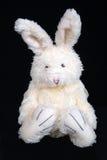 2 bunny Πάσχα στοκ φωτογραφίες