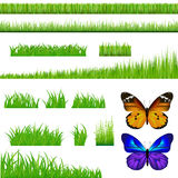 2 Butterflies And Green Grass Set. Vector. 3 Backgrounds Of Green Grass And 9 Bunches Of Grass And 2 Butterflies, Isolated On White Royalty Free Stock Photography