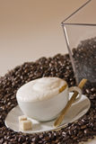2 cappuccino Obraz Royalty Free