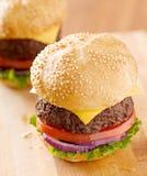 2 cheeseburgers в естественном свете. Стоковые Фотографии RF