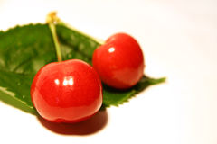 2 cherries Stock Photo