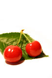 2 cherries Stock Image