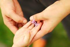 2 child hands mum s Royaltyfria Bilder
