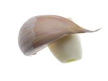 2 chiodi di garofano di aglio Immagine Stock