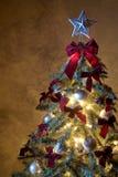 2 christmas tree Στοκ εικόνα με δικαίωμα ελεύθερης χρήσης