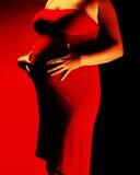 2 ciała brzemienność Zdjęcie Royalty Free