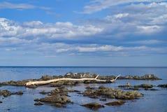 2 cloudscape morze Obrazy Stock