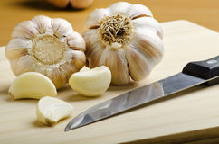 2 clusters of garlic Royalty Free Stock Images