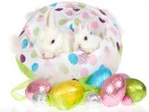 2 conejitos con los huevos de Pascua Imágenes de archivo libres de regalías