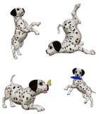2 dalmatian щенят Иллюстрация штока