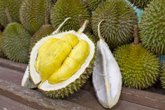 2 durian obrazy stock