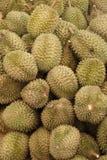 2 durians Стоковое Изображение