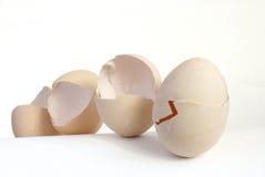 2 eggshell Zdjęcia Stock