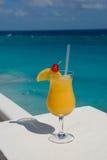 2 egzotyczne napojów. Zdjęcia Stock