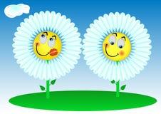 2 fiori divertenti Fotografia Stock