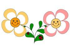 2 fiori e ladybugs divertenti Fotografia Stock