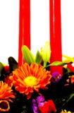2 flory obrazy royalty free