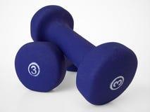 2 free hand weights Στοκ εικόνες με δικαίωμα ελεύθερης χρήσης