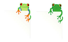 2 frogs in corner of page Stock Image