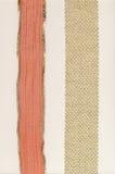 2 fronteras de oro del cordón en el fondo blanco Imagenes de archivo