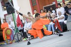 2 fu kung shaolin Arkivbild