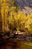 2 górski strumień Zdjęcia Royalty Free