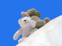 2 gelukkige Teddybear Stock Fotografie