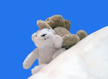 2 glückliches Teddybear Stockfotografie