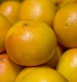 2 grapefruitowy Zdjęcia Stock