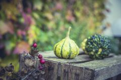 2 Green Fruit on Wooden Table Near Pink Small Fruit during Daytime Royalty Free Stock Photo