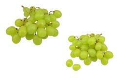 2 groupes de raisins verts Photographie stock