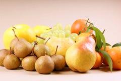2 höstfrukter Fotografering för Bildbyråer